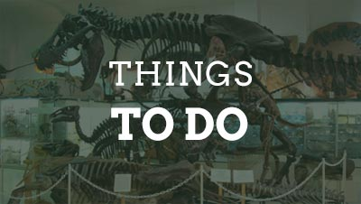 Things To Do In Hill City