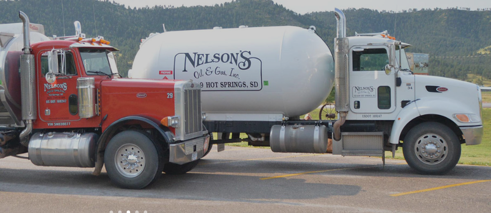 Nelson's Oil & Gas, Inc.